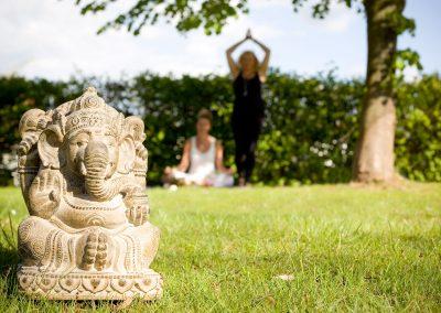 Elefant Yoga im Garten